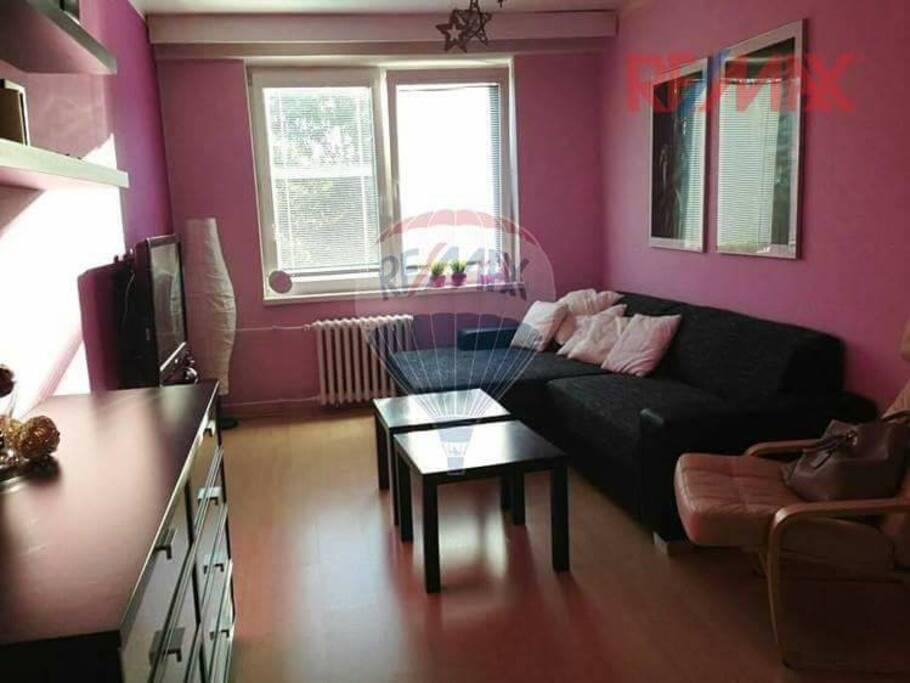 Obývací pokoj + ložnice....