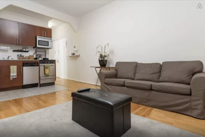 Large One Bedroom in the LES - New York - Huoneisto