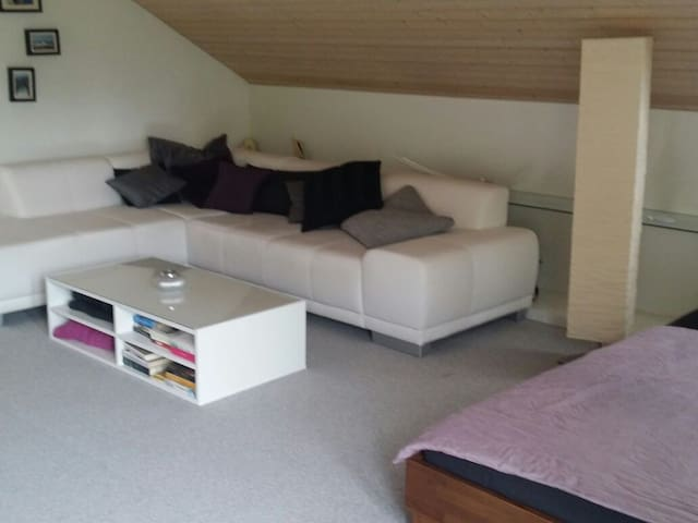 Quiet and cosy little suite - Uznach