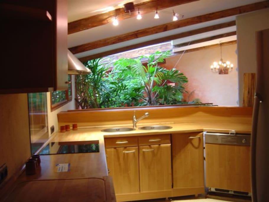 jardin d'intérieur vue de la cuisine