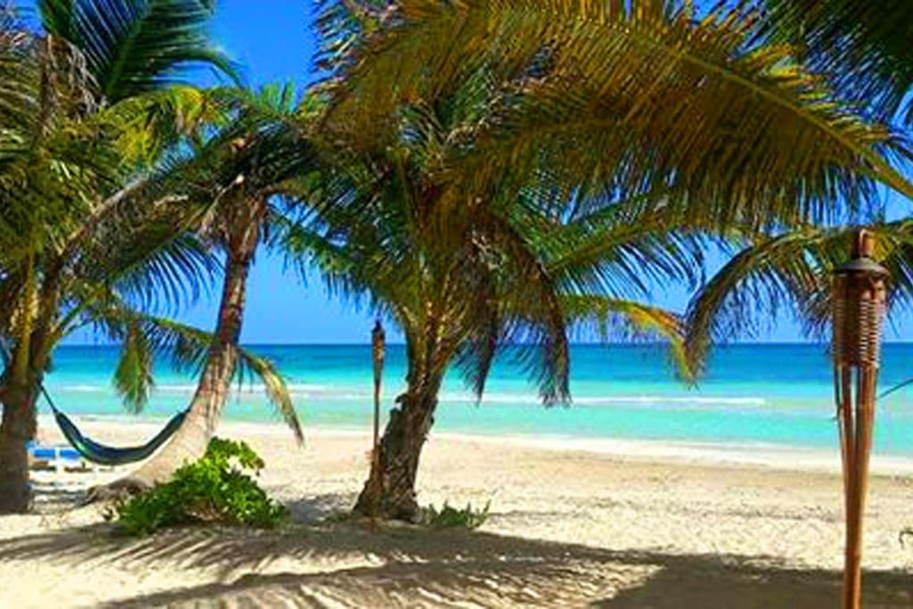 Some days life's a beach!