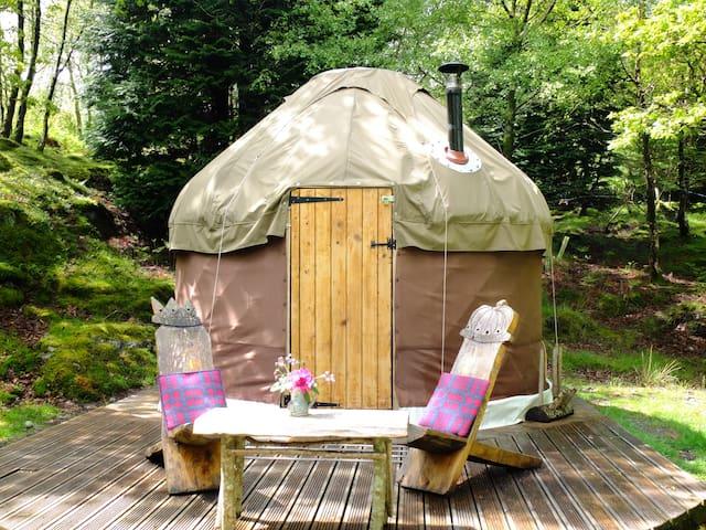 Snowdonia Yurt near Barmouth - Dolgellau - 蒙古包