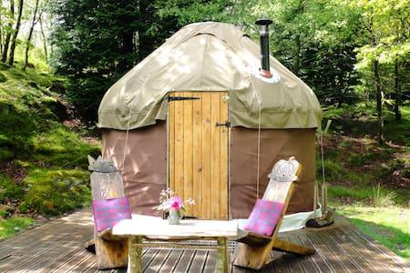 Snowdonia Yurt near Barmouth - Dolgellau