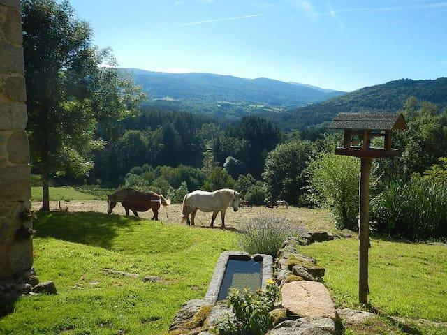AU CALME, DANS UNE NATURE EPARGNEE - Le Brugeron - Casa
