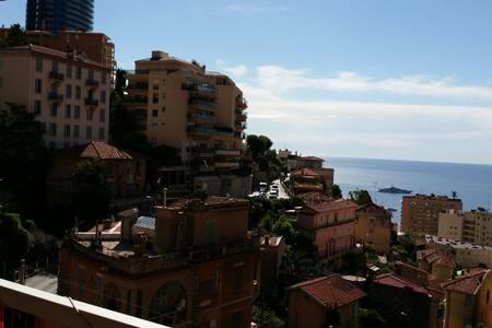 2min Grimaldi Forum+Terrace+Seaview