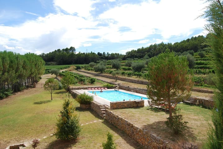 Beautiful Winery with Pool & Garden - Carcès