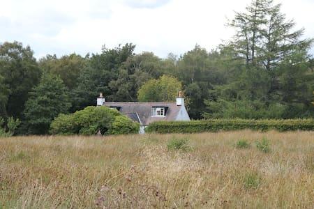 Tranquil remote hillside cottage
