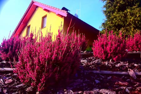 Discover the beautiful countryside (B&B) - Bludov - บ้าน