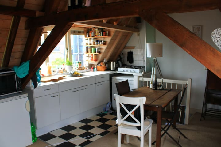 Knus appartement in het centrum! - Utrecht - Condominium