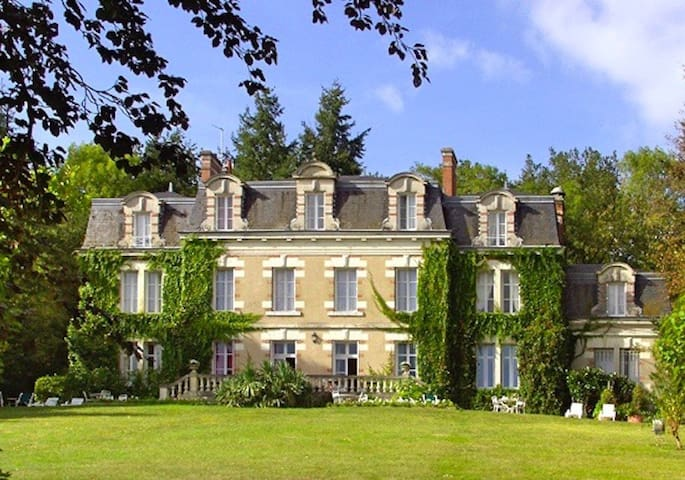 Elegant manor set in the Loire Valley - Onzain - Castle