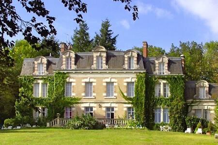 Elegant manor set in the Loire Valley - Onzain