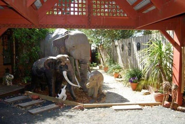 look elephants !