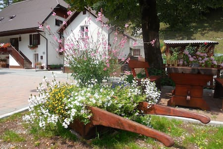 ROOM B CUDER FOR 2 PERSON - Bovec