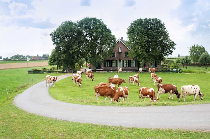 Luxury old farmhouse near Amsterdam 2bedrooms - Nieuwveen - Leilighet