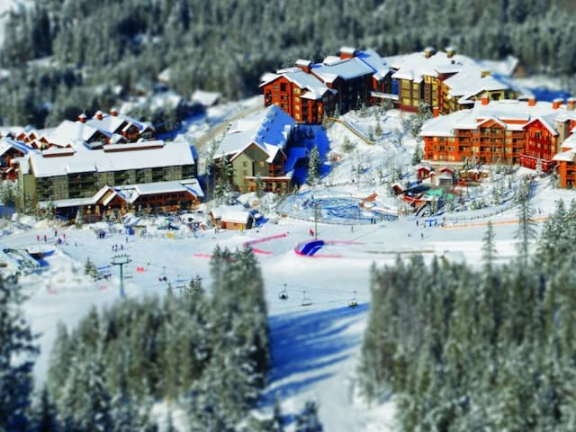 Panorama Ski in/out $836 for entire wk April 12-19
