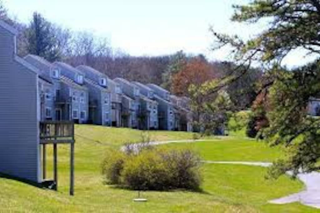 Tree Tops Villas - general property
