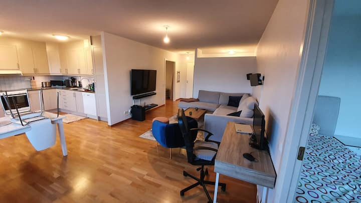 Spacious room in cozy apt close to metro and city