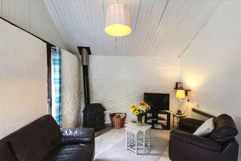 Living Area with Logburner