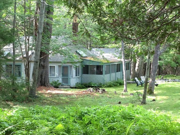 Cozy Acadia cabin- walking trail to shore