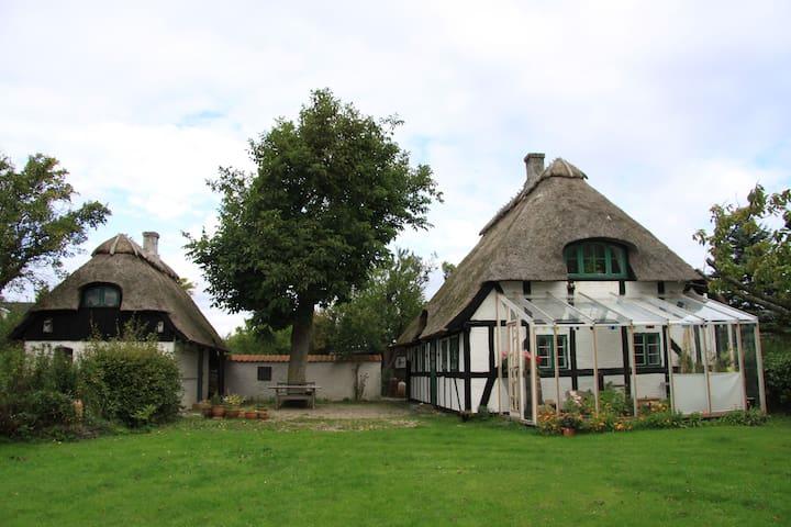 Paradiesisches Sommerhaus am Meer - Vester Skerninge - Blockhütte