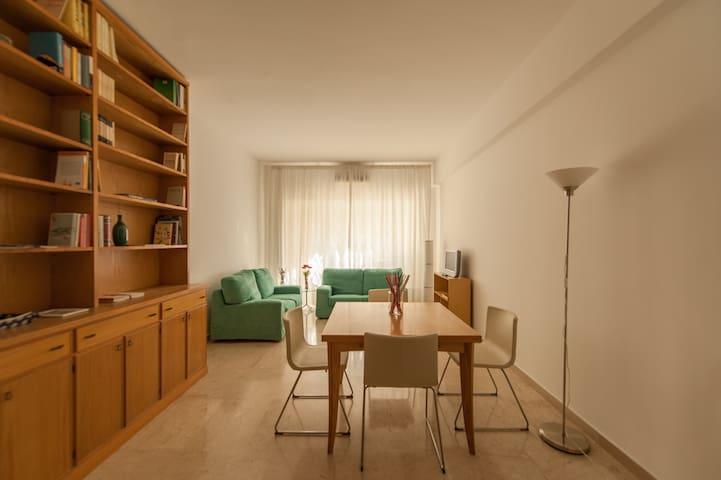 La Mimosa apartment in Rome