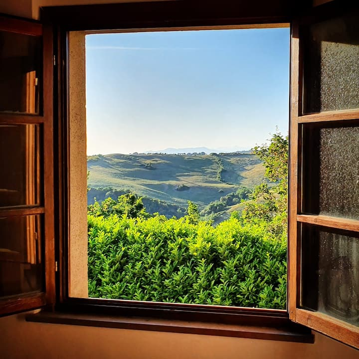 """""""The nest"""", romantic flat in the earth of Tuscany"""