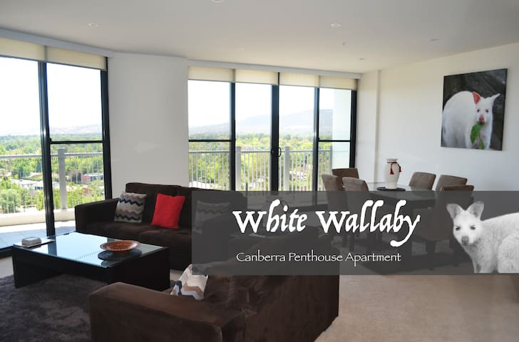 White Wallaby Penthouse Apartment - Canberra - Byt