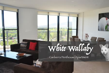 White Wallaby Penthouse Apartment - 堪培拉 - 公寓