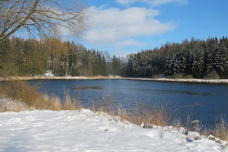SAPANA Ferienwohnung - Pockau-Lengefeld