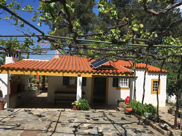 Exterior da casa. Frente da casa com estacionamento, esplanada, telheiro, jardim e churrasqueira.