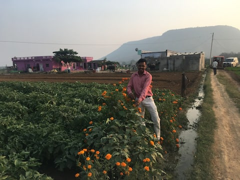 Ranthambore Farmhouse Under Khandar Fort