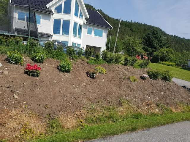 Apartment and house , Ålesund