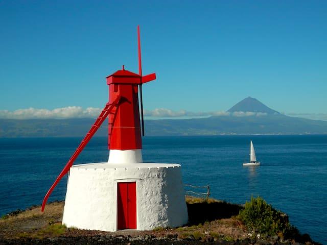 AZOREAN COTTAGE - São Jorge Island - Velas - Dom