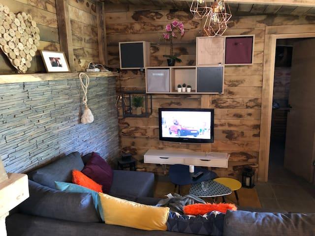 Salon TV avec canapé lit