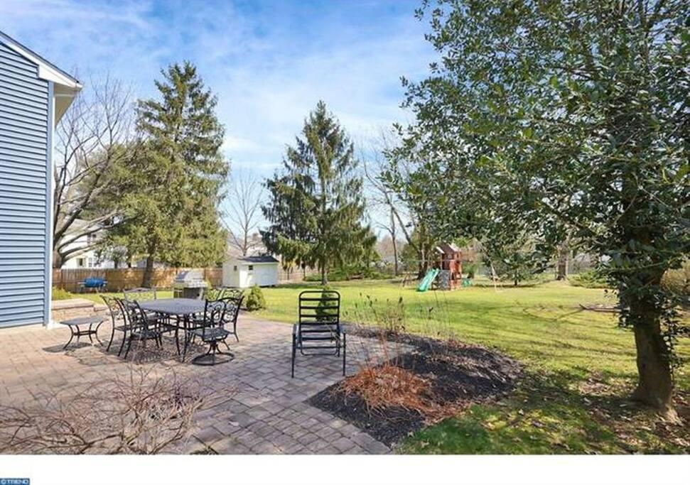 Backyard with play set