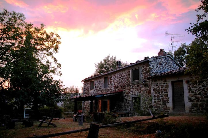 Rooms in the Forest: Wild 'n Peace in Santa Fiora - Santa Fiora - Casa