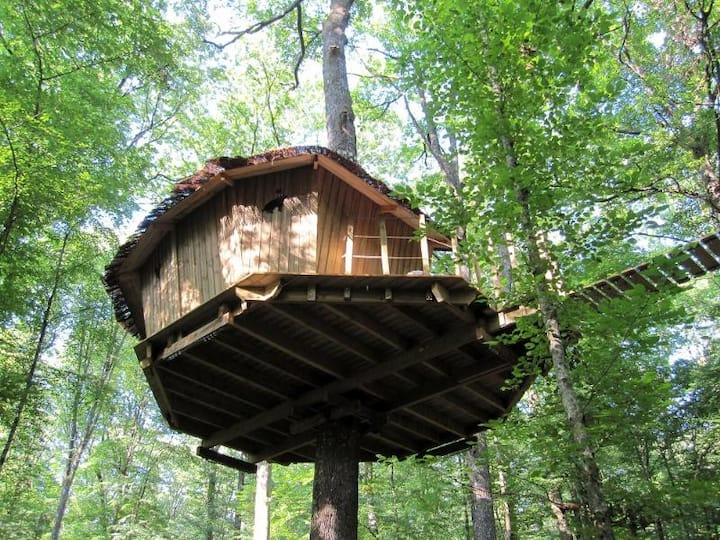 Les Cabanes du Lac - cabanes dans les arbres