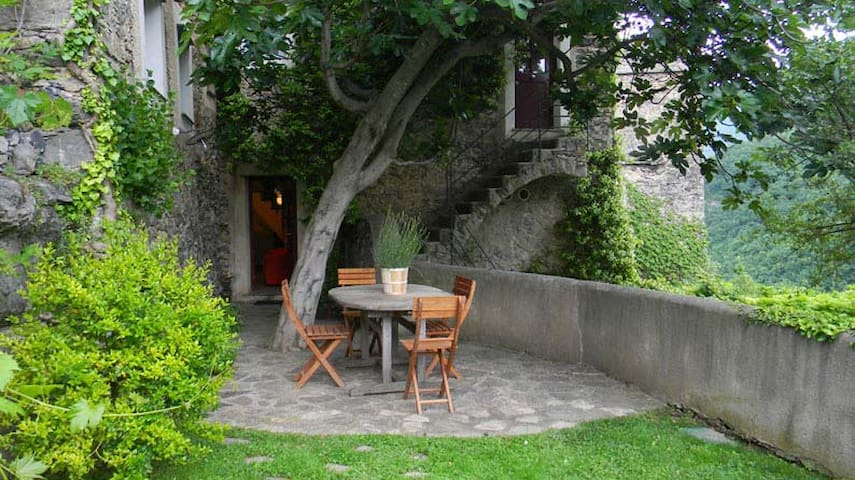 "Colletta - ""The Fig Tree"" - Colletta - Apartment"