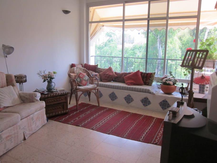 Natural Lit Living Room