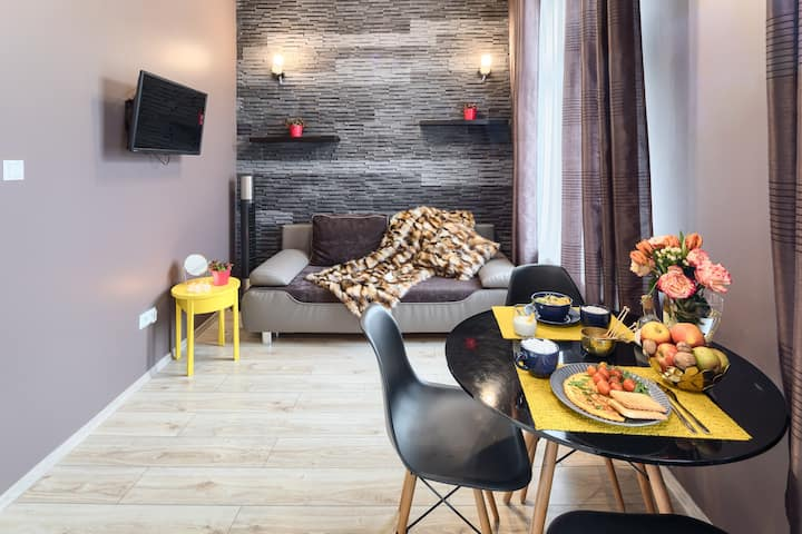Comfortable Apartment  nearby centre