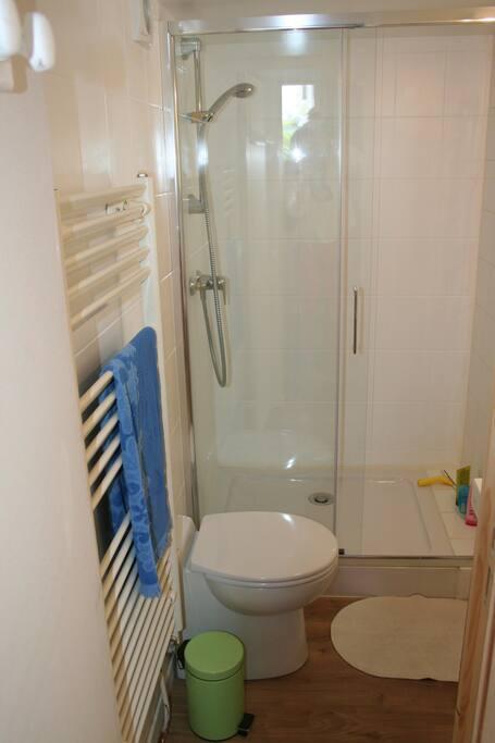 Salle de douche privative et entièrement refaite a neuf.