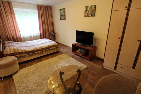 Небольшая уютная 1 ком.кв. в Алматы - Almaty - Apartamento