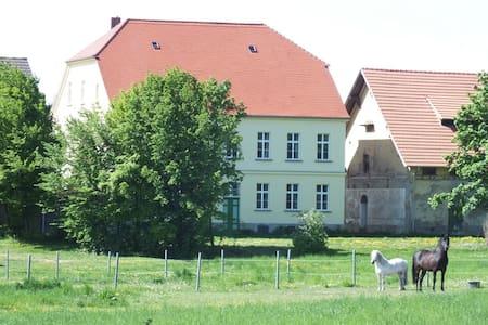 Försterwohnung auf dem Rittergut! - Falkenstein/Harz - Pis