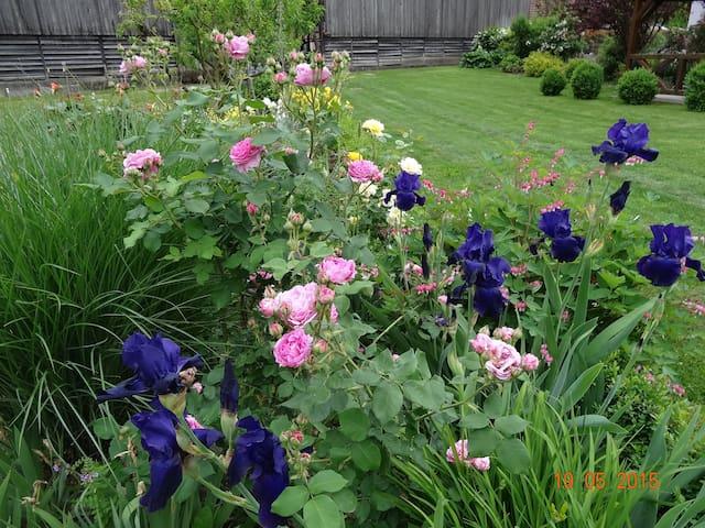 grand jardin extérieur commun. jardin