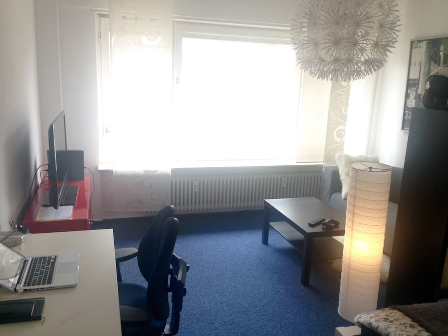 Room with bed, sofa, desk, TV. Very well lit with large windows