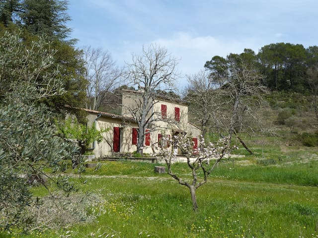 Pretty little house with pool for 4 poeple - Barjols - House