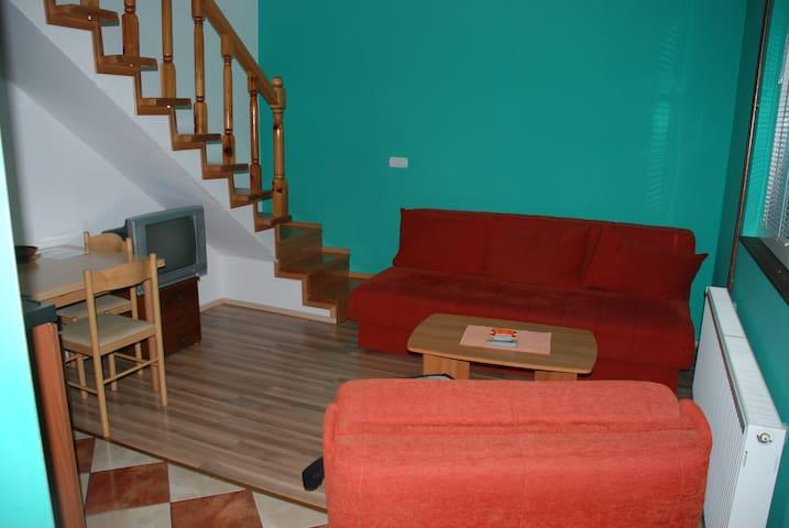 Apartmani Radovic,Duplex Apartman - Kolašin - Flat
