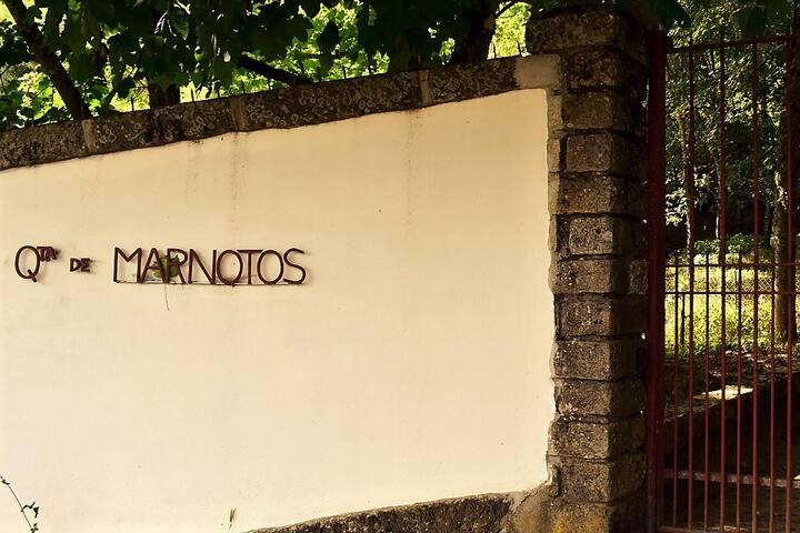 Estúdio de Baixo - Quinta de Marnotos