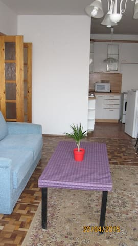 Apartment near to center - Prague - House