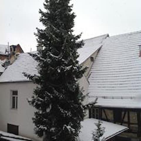 Ein Zimmer in Reutlinger Innenstadt - Reutlingen - House